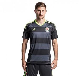 Camiseta de Gales 2016/2017